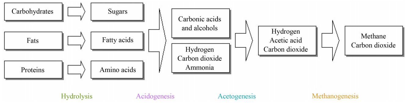 Anaerobic Digester Design
