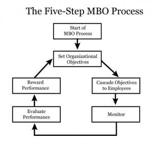 Performance Management For Millennials